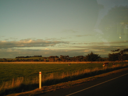Road to Phillip Island