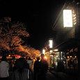 Night Cruise at Kenrokuen, Kanazawa