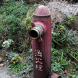 An Old Fireplug