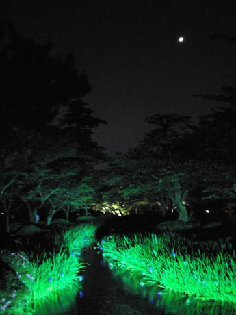 Kenroku-en Garden by Moonlight