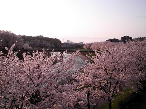 Kanazawa in Rosy Haze 2