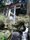 Kosuge2